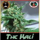 The Kali 10 stk Feminized