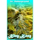 King Kong - 8 stk. Feminized