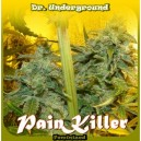 Painkiller - 8 stk. Feminized